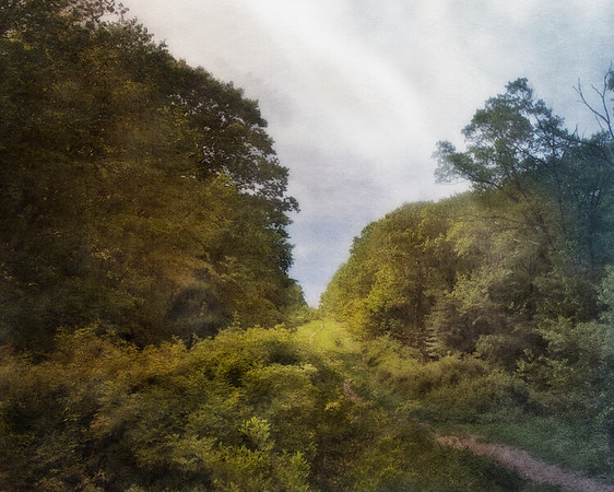 Long Island Landscape, Makamah Nature Preserve, (Crab Meadow Park), West Fort Salonga,  Suffolk County, Long Island, New York, Northport Photos