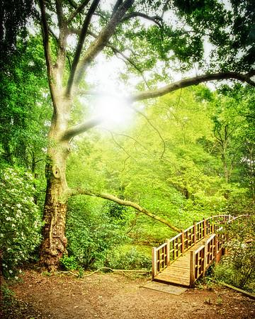Old Westbury Gardens, Nassau County, Long Island, New York