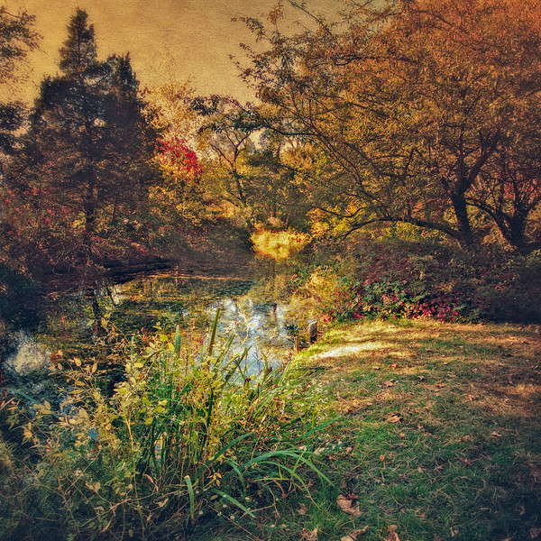 Setauket Mill Pond, East Setauket, Suffolk County, Long Island, New York