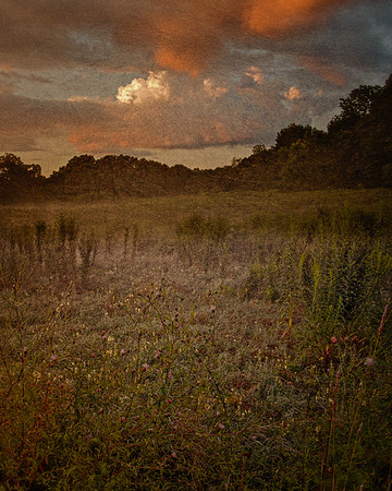 Uplands Farm, Cold Spring Harbor, Nassau County, Long Island, New York