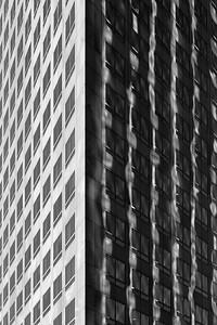 LA Reflections - The Dark Side