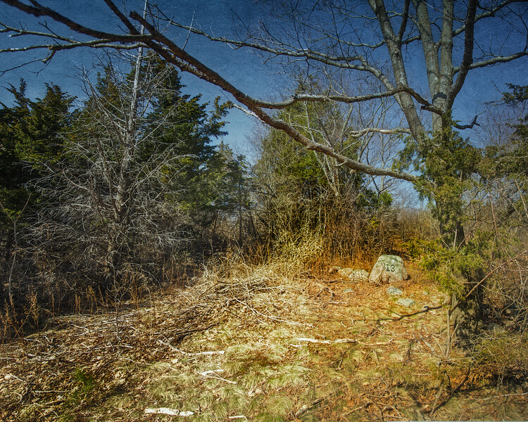 New England Landscapes: Cellar Hole 13, Dogtown Commons, Gloucester, Cape Ann, Wessex County, Massachusetts