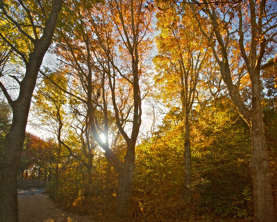 New England Landscapes: Plimoth Plantation, Plymouth County, Plymouth, Massachusetts