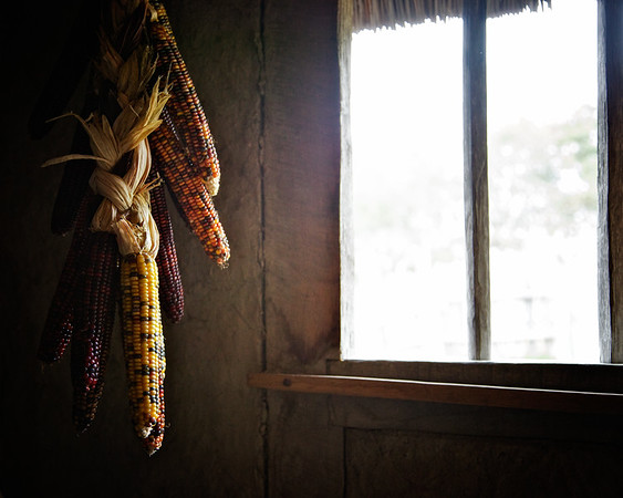 Life in Plymouth Colony: Dried Corn on the Wall, 1627 English Village, Plimoth Plantation, Plymouth, Massachusetts
