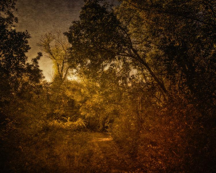 Salem Witch Hunts: Gallows Hill, Salem, Essex County, Massachusetts