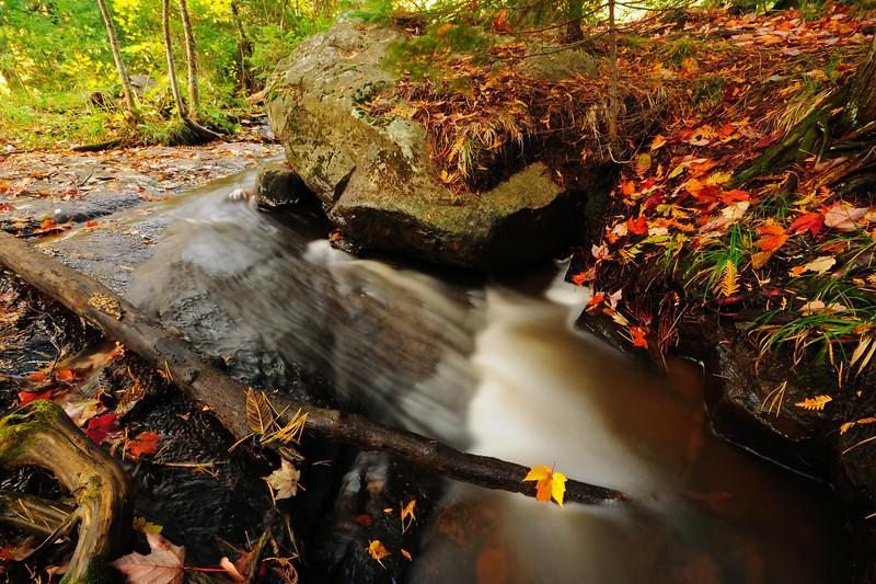 Autumn at Bond Falls, U.P. Michigan.
