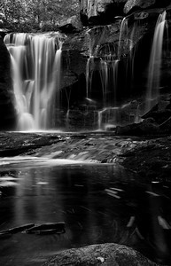 WV_DS_10_MG_2393