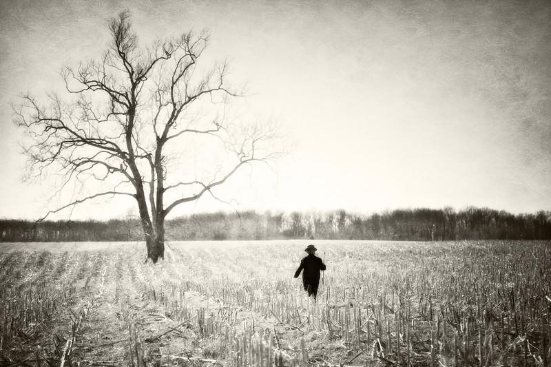 Boy Running Towards Tree