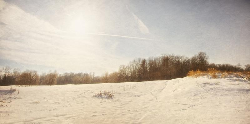Glaring Snow