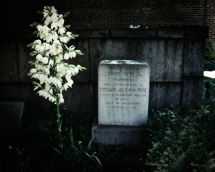 Burial Ground of Westminster Hall, Baltimore, MD