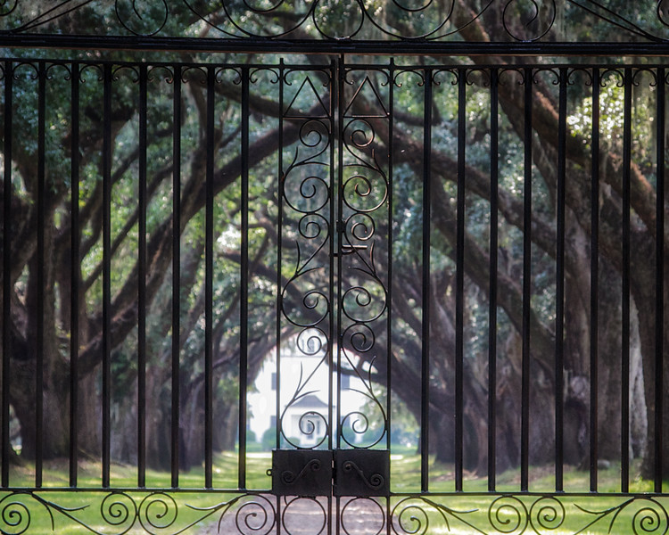 Lowcountry Photos: Front Gates and Avenue of Oaks. Prospect Hill Plantation, Edisto Island, Charleston County, South Carolina