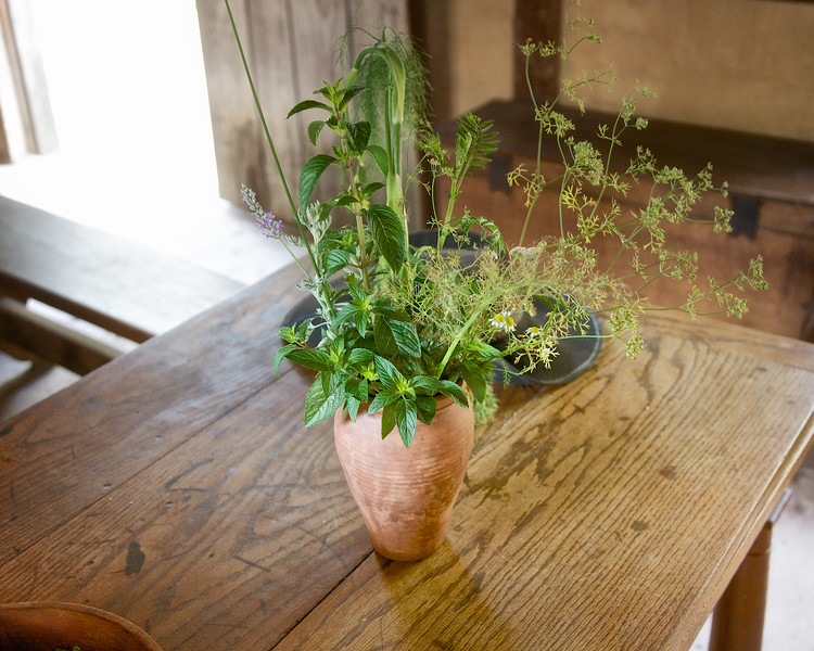 Collected Herbs on Table