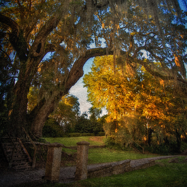 Middleton Place National Historic Landmark, Ashley Road, Charleston, South Carolina