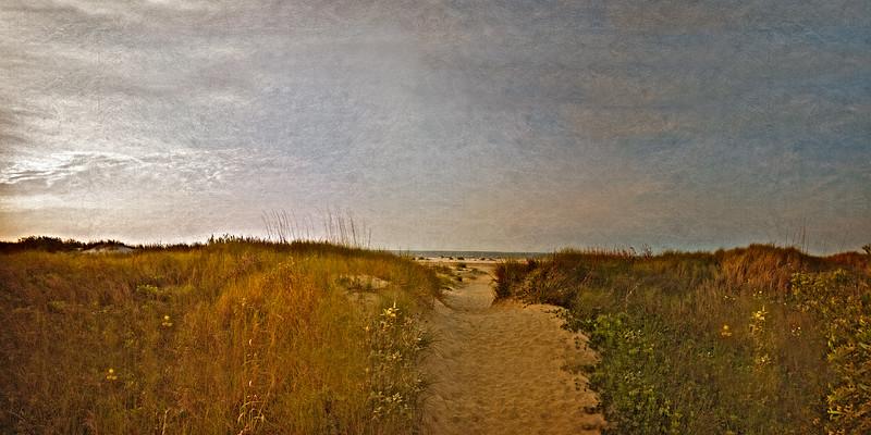 South Carolina Seascapes: Path Throught The Dunes. Sullivan's Island, Charleston, South Carolina