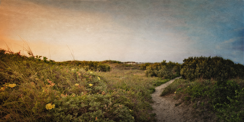 South Carolina Seascapes: Dunes at Sunrise. Sullivan's Island, Charleston, South Carolina