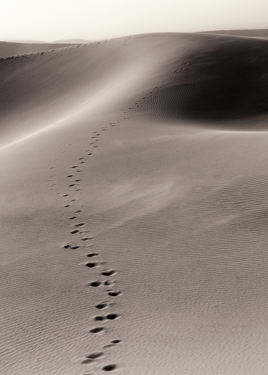 Vinod Kalathil - Death Valley - Fade Away