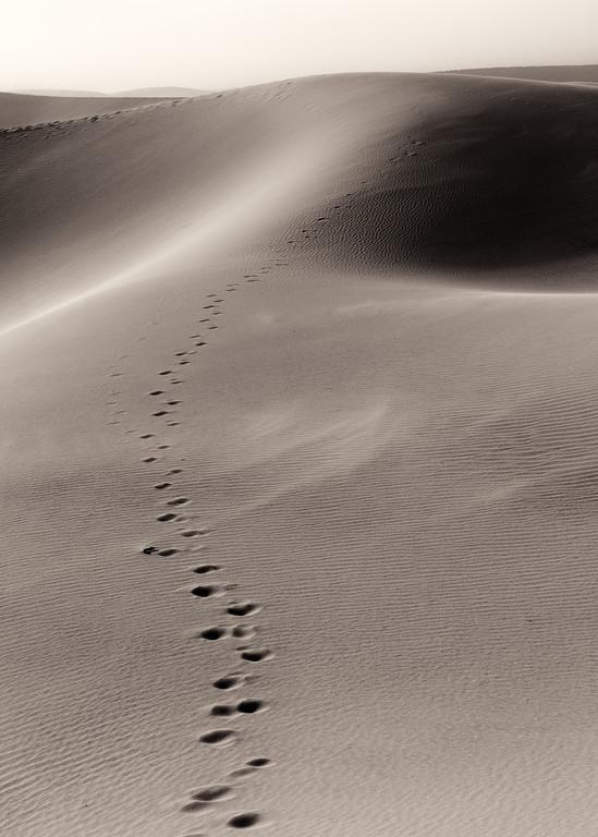 Vinod Kalathil - Death Valley - Fade Away