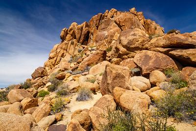 Mastadon Peak