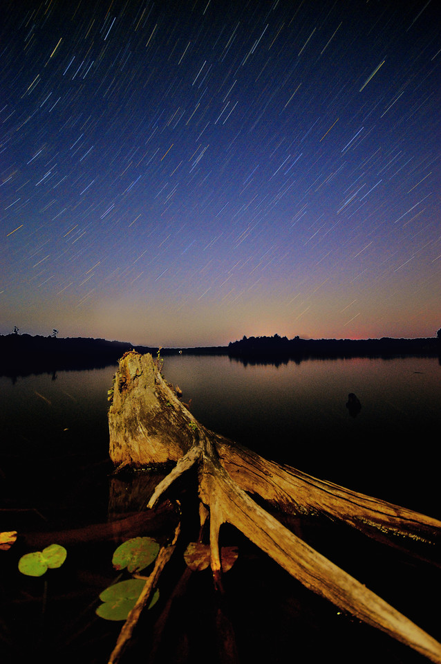 A partially submerged stump with night sky, Wisconsin.