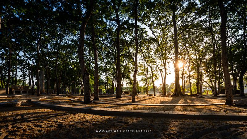 Vachirabenjatas Park (Suan Rod Fai), Chatuchak, Bangkok