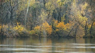 Algonkian Potomac View Last Colors of Fall 1