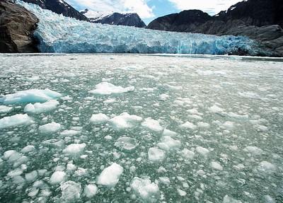 LeConte Glaciers Edge c