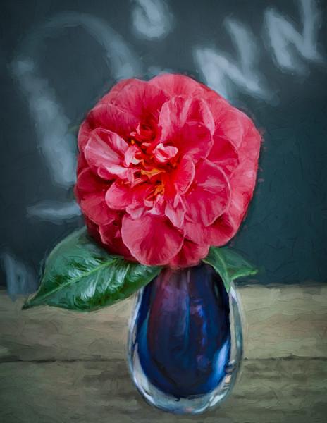 Studio Pink Camellia in Blue Vase