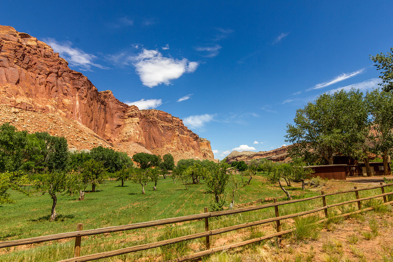 Fruita Orchard at Capitol Reef