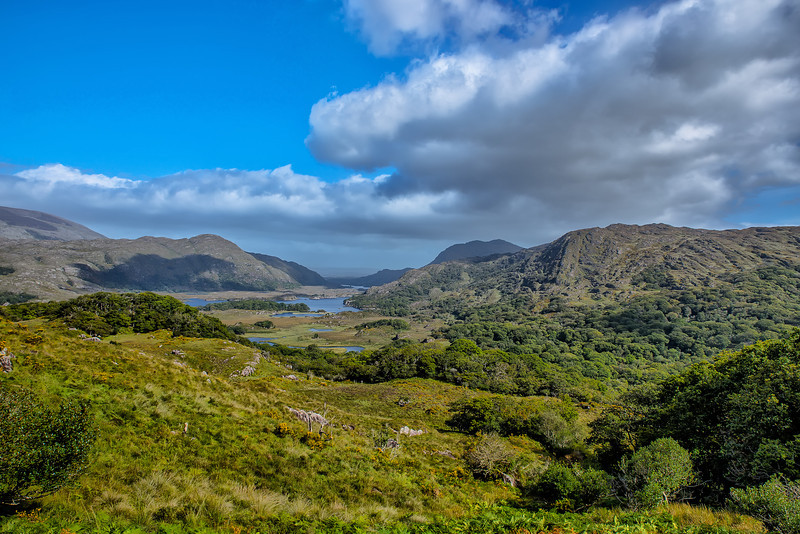 Looking Out at Killarney
