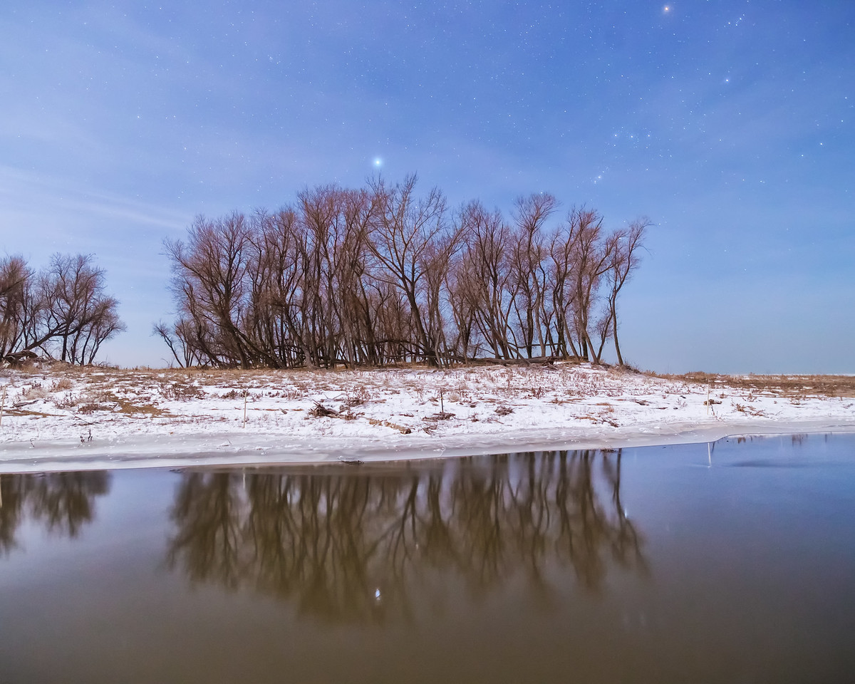 Trees By Spanish Fork River
