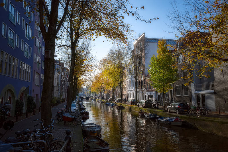 November Colors in Amsterdam