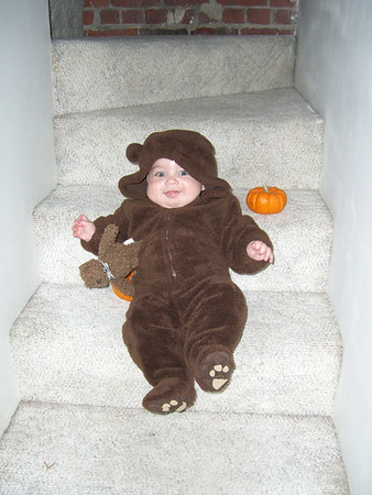 October 31st: the little Halloween bear