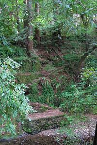 3777 Boulder Creek