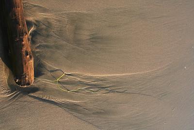3976 Sand Patterns