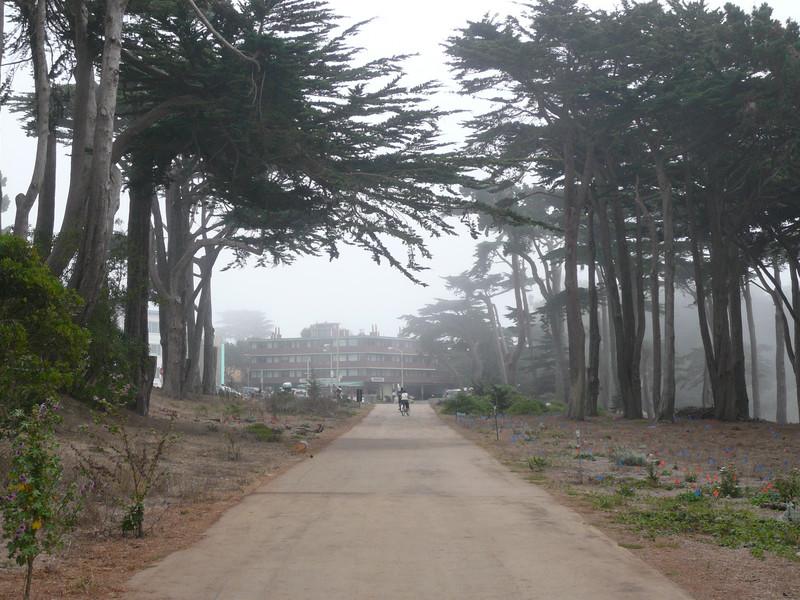Their hotel by the beach