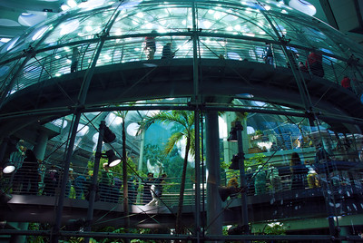 Tropical dome