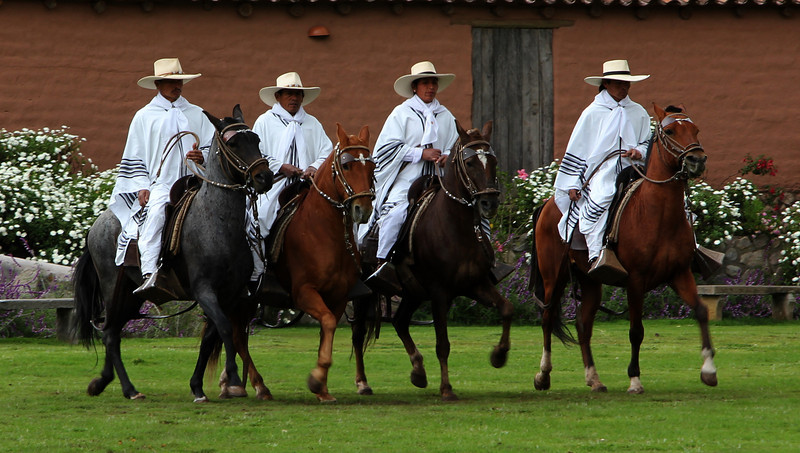 An equestrian show.