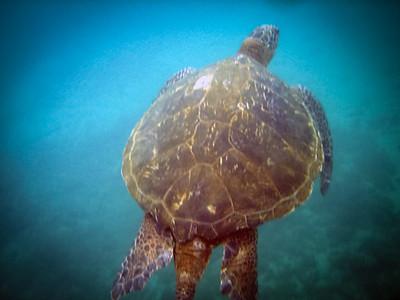 2012-07 Hawaii