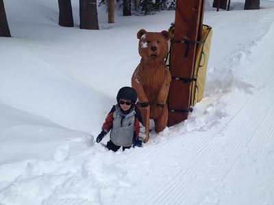 No fear of bears
