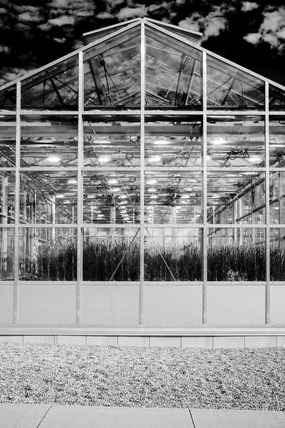 Experimental Farm