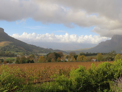 Another view from the winery (the Delaire Graff Estate in Stellenbosch, South Africa.