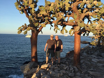 Joe and Ed under a canopy of prickly pear cactus. When the cactus is undisturbed for 40 years, it grows a thick trunk!