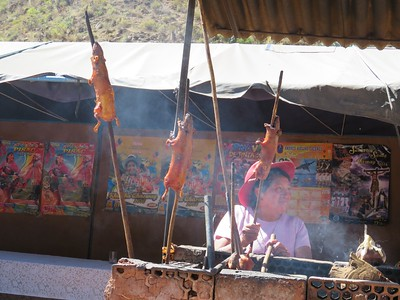 On the other hand, we could have stopped by the side of the road for some roasted guinea pig on a stick. Quite popular in Peru... we passed.