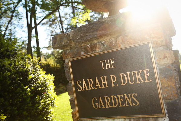 Dean's Reception at Duke Garden