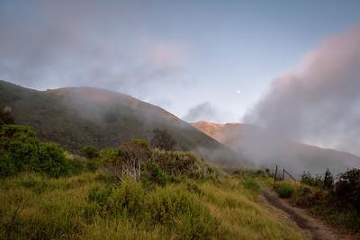 Big Sur Morning Hike