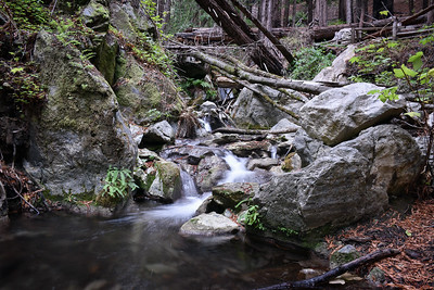 Limekiln Creek I