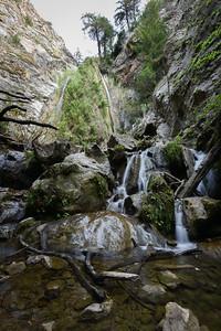Limekiln Falls Portrait