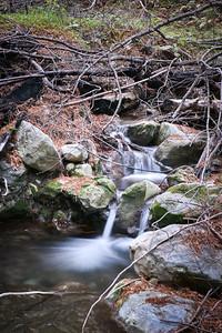 Limekiln Creek Portrait