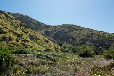 Santa Cruz Island Midday