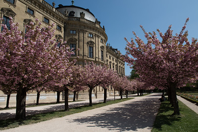 Wurzburg Residenz Garden